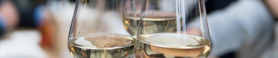 Calici di vino - foto Photo by Matthieu Joannon on Unsplash